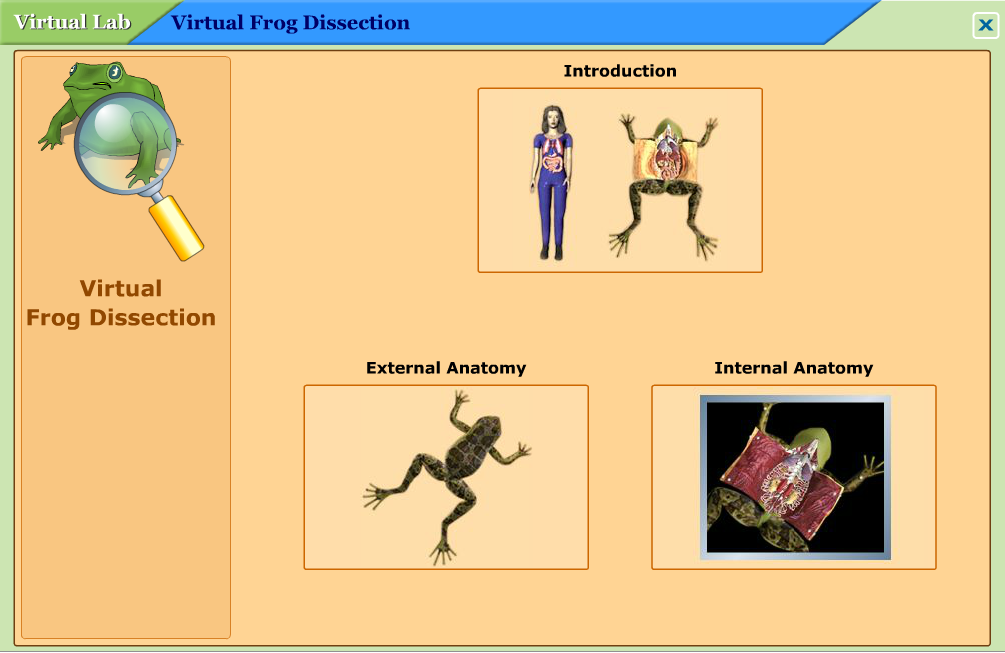 Virtual Frog Dissection Worksheet Virtual frog dissection