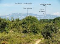 Vistes de les serres de Berga des dels Camps del Pas de Vilarrassa