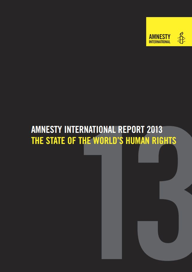 essays on amnesty international