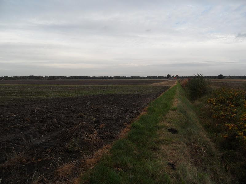 Ontdekking van Groningen (e o )  17 10 12