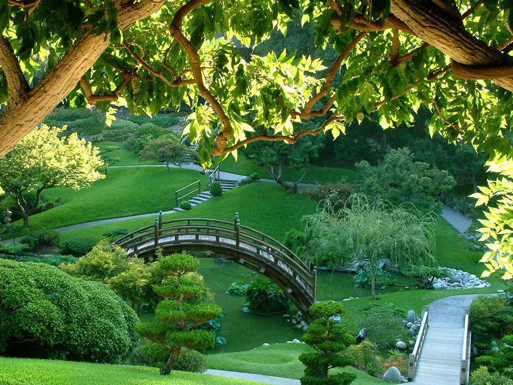 http://3.bp.blogspot.com/-j--tw5MiIko/TdVgZzN-MiI/AAAAAAAAABM/bCwr9LM_F8Q/s1600/jardin-japones1.jpg