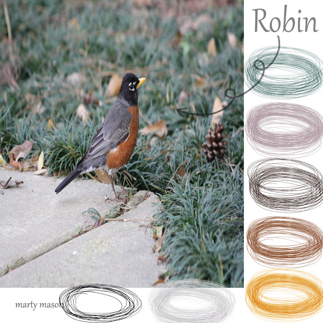 Robin:  ColorBoard No. 23