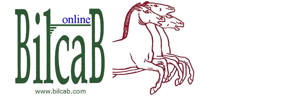 BILCAB blog