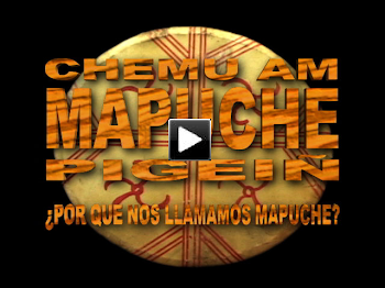 ¿POR QUÉ NOS LLAMAMOS MAPUCHES? ( DOCUMENTAL completo on line)