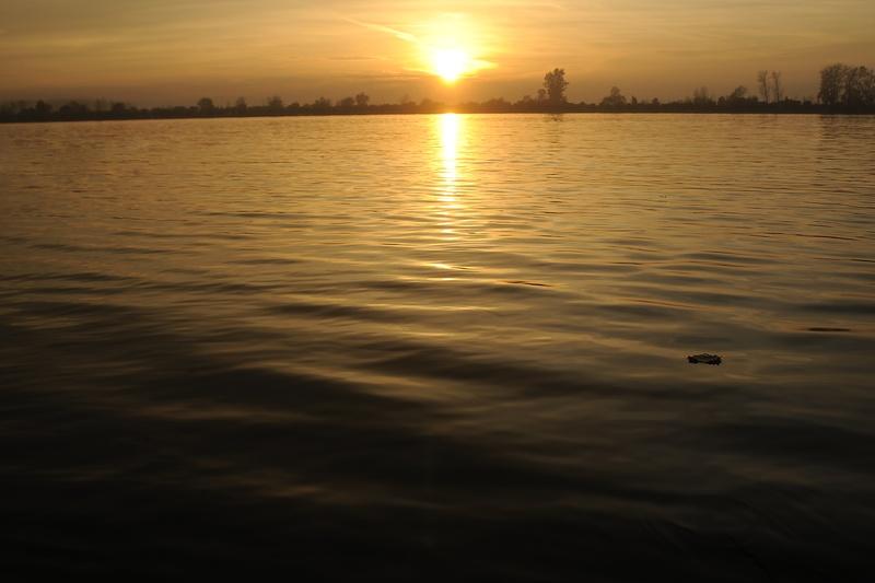Reka Sava - Šabac