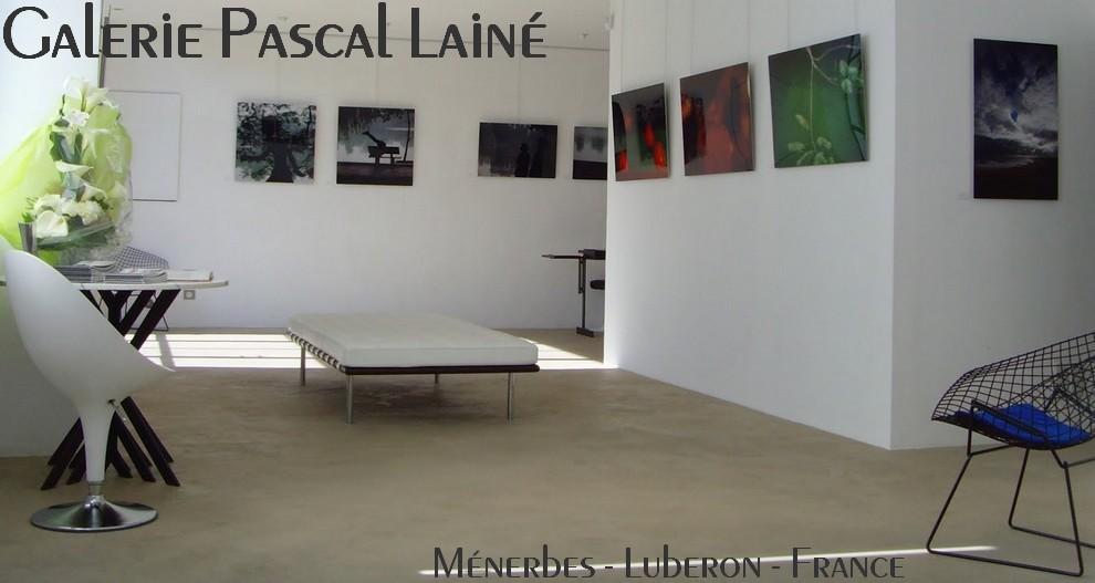 Galerie Pascal Lainé - art contemporain