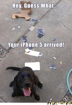dog eat iPhone 5 (funny)