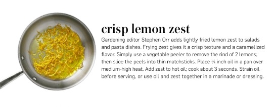 Crispy lemon zest