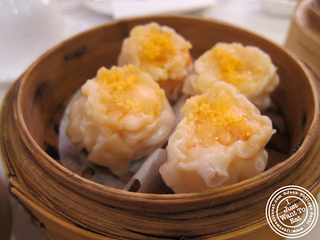 Image of Shrimp shumai at the Golden Unicorn in Chinatown NYC, New York