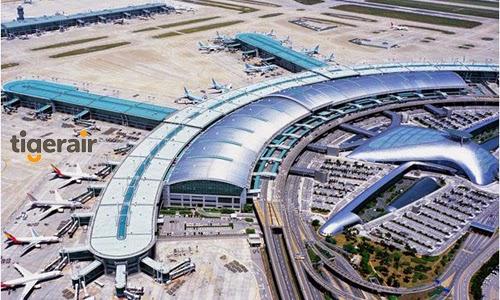 Cùng Tiger Airway tham quan sân bay quốc tế Changi