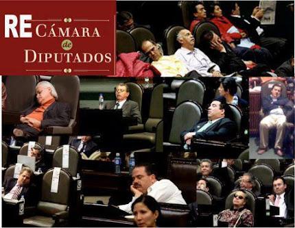 RE-CÁMARA DE DIPUTADOS