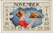November turkey calendar