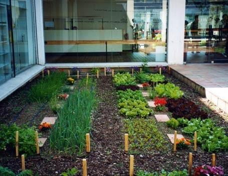 Arte y jardiner a el huerto en casa for Hacer un huerto en el jardin