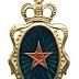 رئيس أركان الحرب العامة يوافق على جدول ترقيات الجيش لسنة 2013