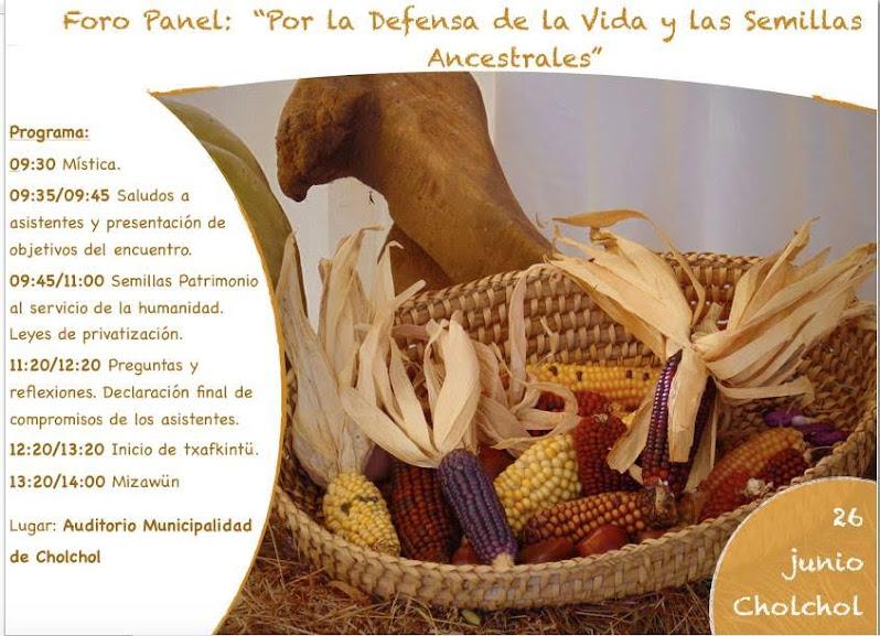 CHOL CHOL: FORO PANEL, POR LA DEFENSA DE LA VIDA Y LAS SEMILLAS ANCESTRALES