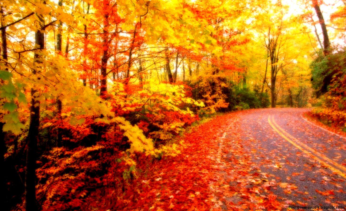 hd widescreen fall wallpaper - photo #29