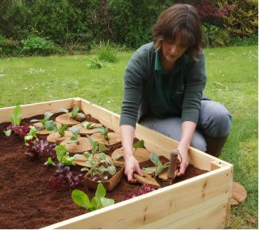 No-Dig Garden Bed Workshop / Permaculture Methods Sat. October 1, 8:30 a.m.