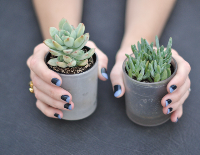 nails, messy french tip manicure, succulents