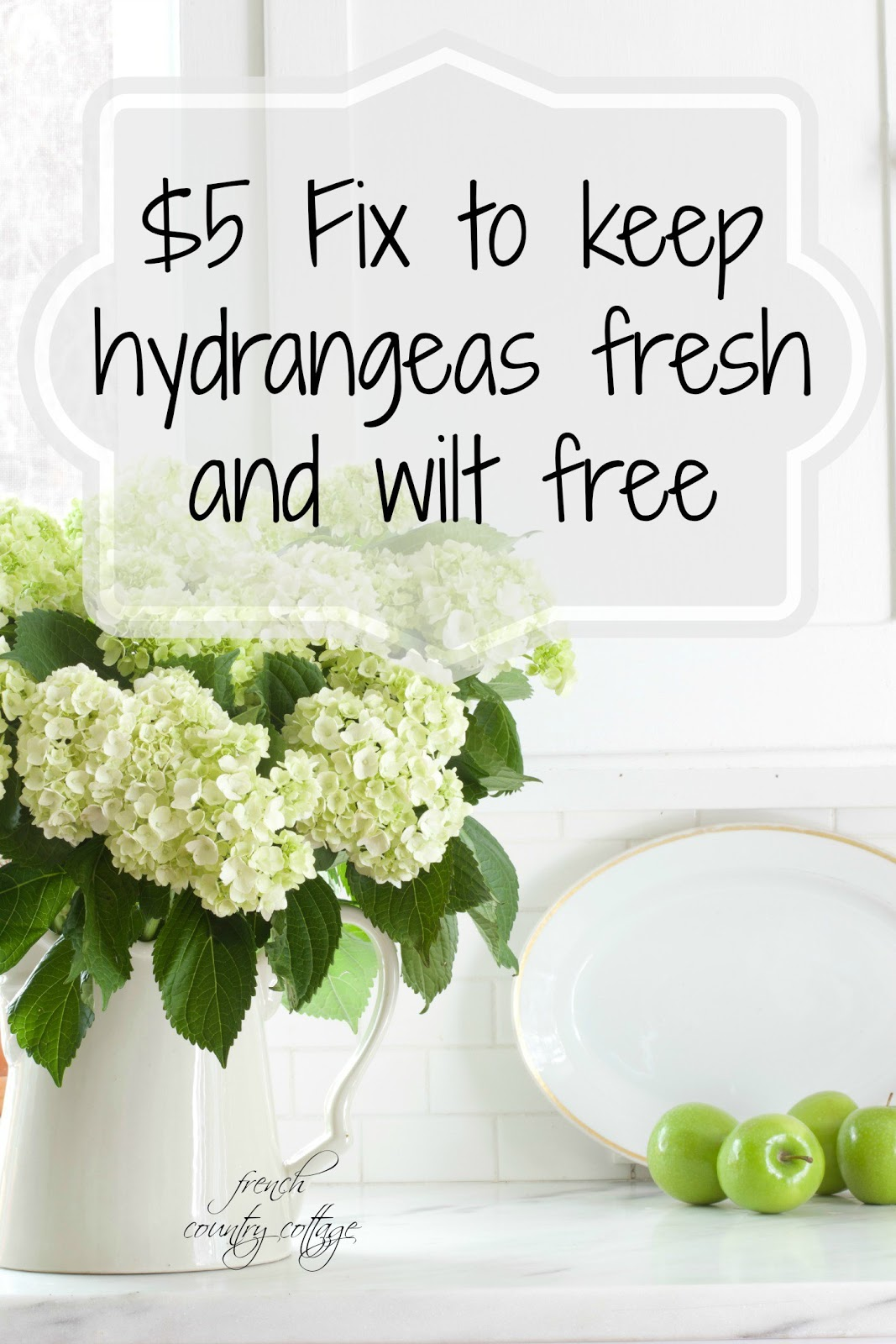 Flower Power $5 fix to keep hydrangeas fresh FRENCH COUNTRY COTTAGE