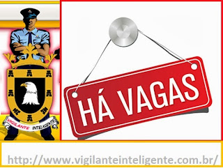vigilanteinteligente.com.br