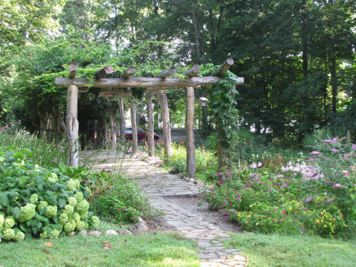 Limberlost garden