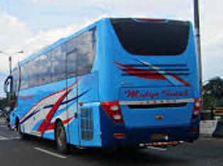 Nomor Telepon Agen Bus Mulyo Indah