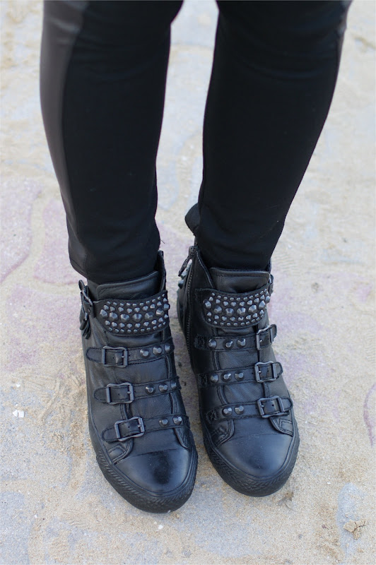 Ash Vertigo bis studded sneakers, Fashion and Cookies