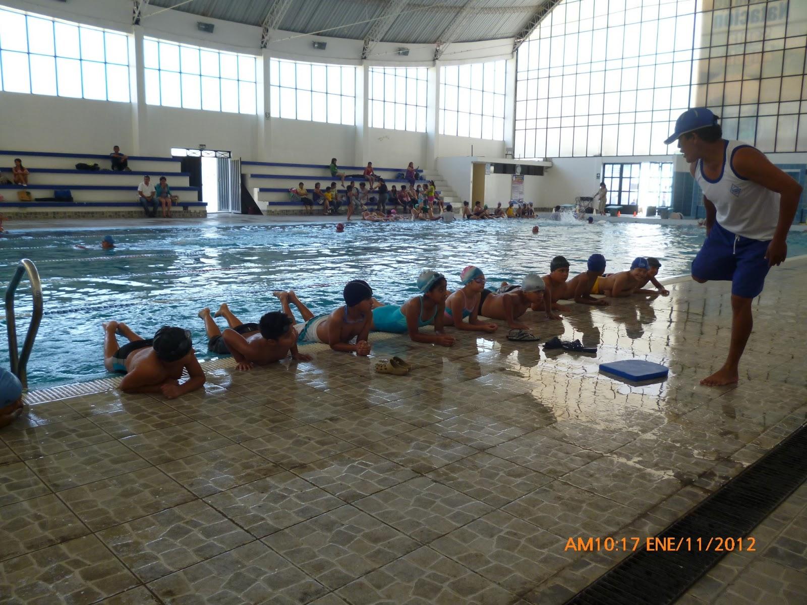 Educaci n f sica metodolog a de la ense anza de la nataci n for Ejercicios espalda piscina