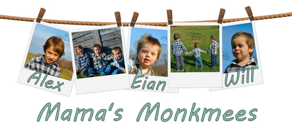 Mama Monkmee