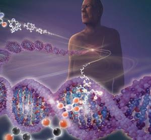 2012 Yılının En Önemli Bilimsel Olayları