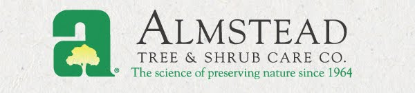 Almstead Tree & Shrub Care Blog