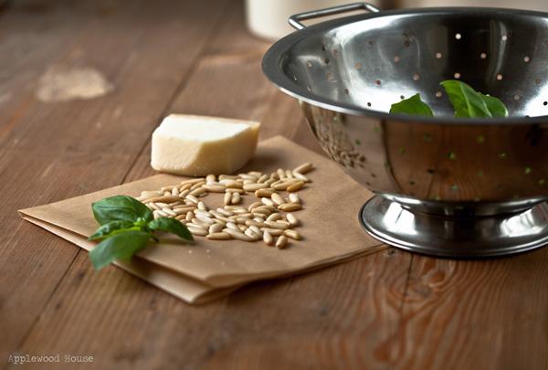 Basilikum Pinienkerne Parmesan einfach schnell