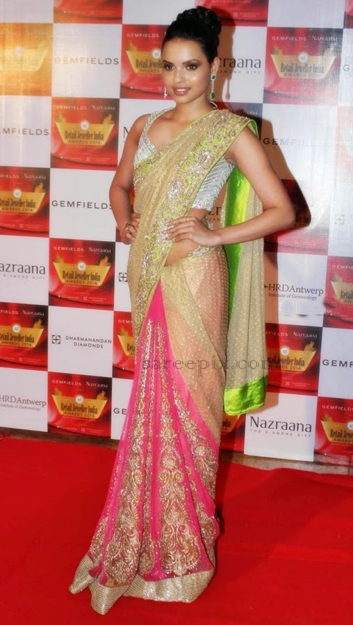 Gail-dsilva-saree-Retail-jeweller-india-awards-2014