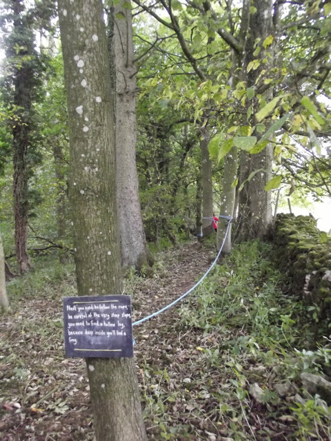 sizergh castle woodland play trail rope trail