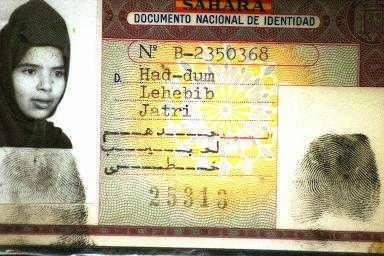 Reconocen a la hija de una mujer saharaui el derecho a la residencia temporal en España por arraigo