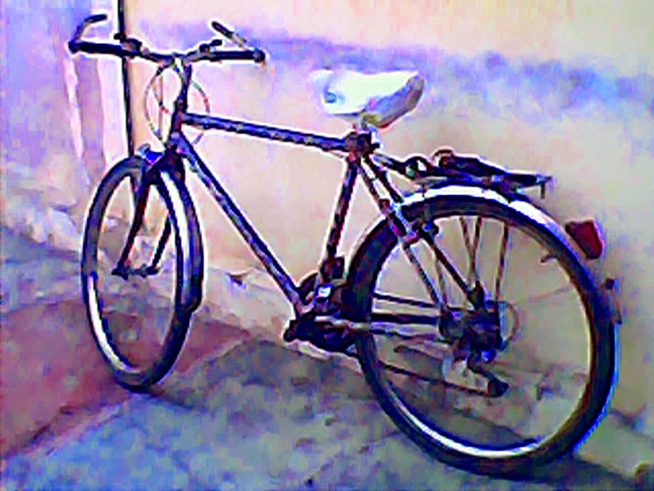 Orange Monet Bike