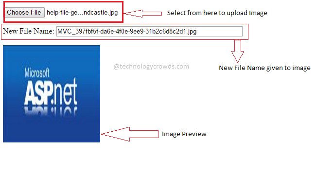 Open (Display) PDF File inside jQuery Dialog Modal