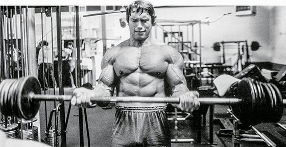 Worldwidemodel bodybuilders how arnold built his shoulders and arms 0 comments malvernweather Gallery