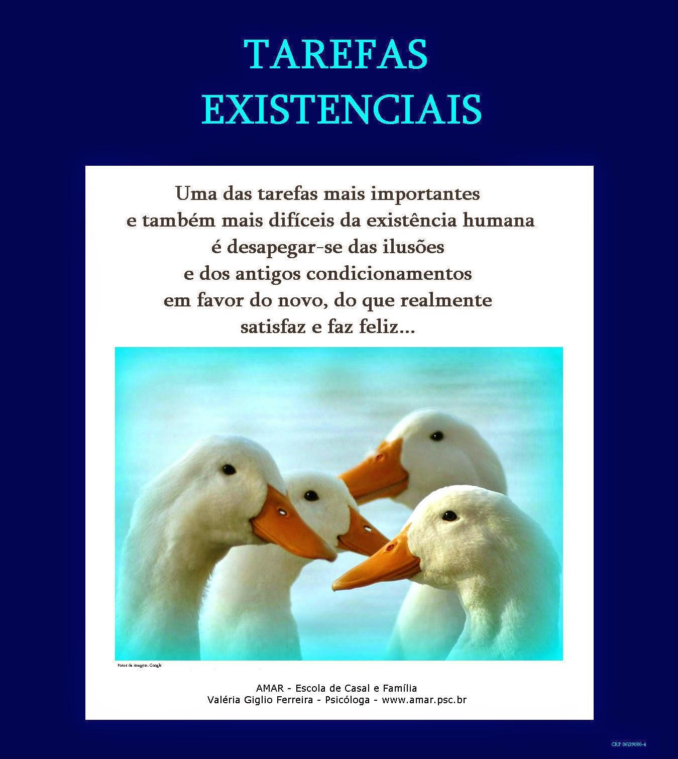 Tarefas existenciais e vitais...