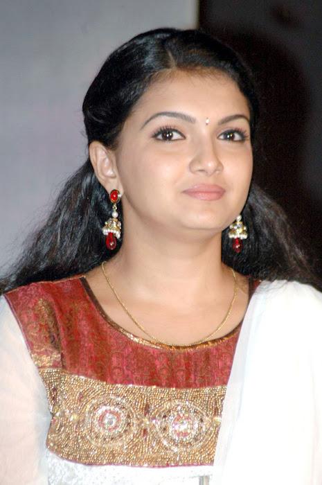 saranya mohan azhagar saamyin kuthirai audio launch