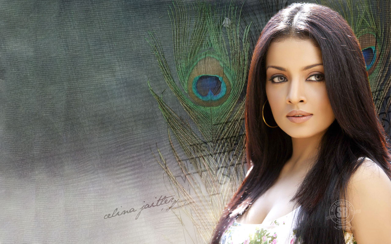Bollywood Wallpapers: Tia Bajpai Wallpapers