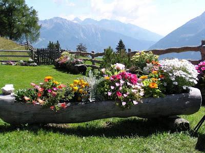 Jardin junto a la montañas con flores de colores