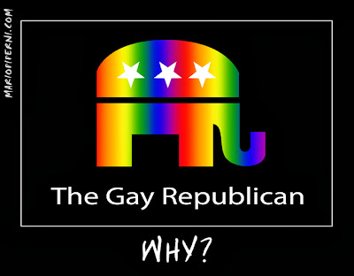 Demotivational poster - 'The Gay Republican - WHY?'