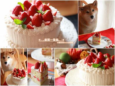 strawberry cream cake with Shiba-Inu KAMI