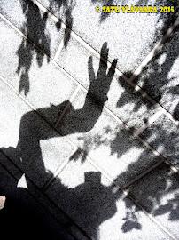 Varjoni omakuva, Shadow selfie: