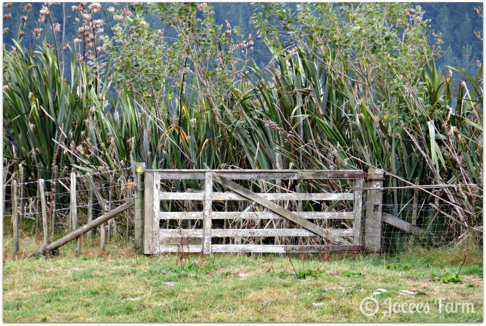 Farm Gates   joceesfarm.blogspot.com