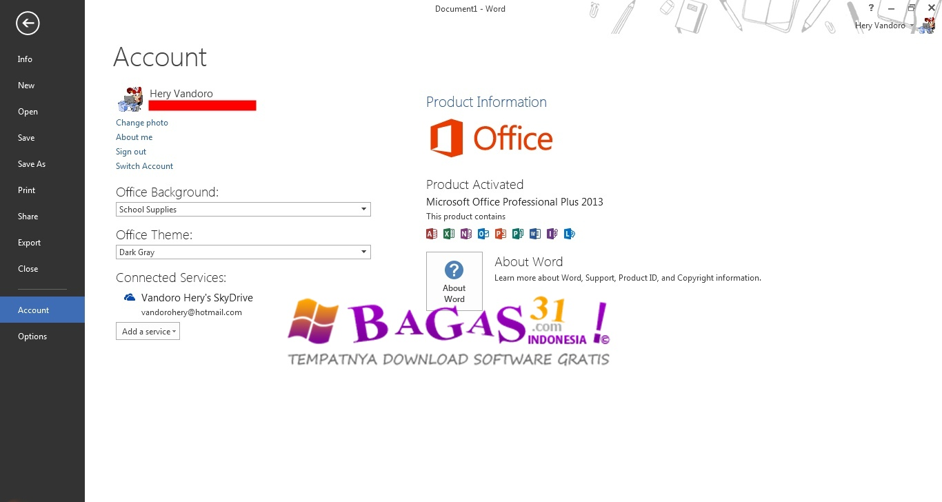 how to download office professional plus 2013