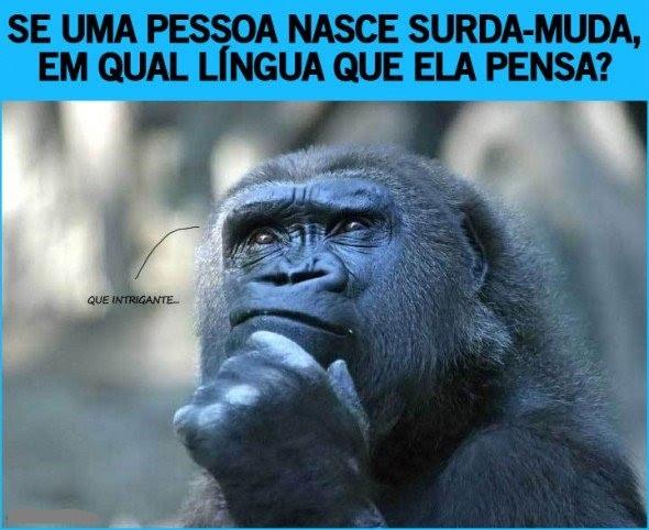Frase do dia - Página 11 Gorila+pensando