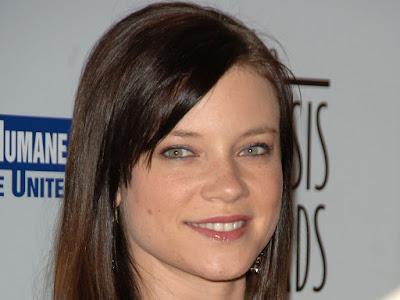 Amy Smart High Quality Wallpaper