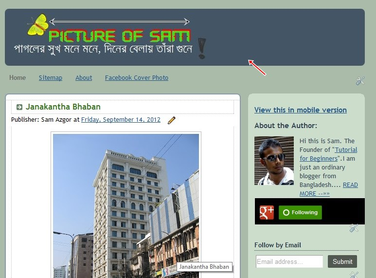 Screenshot of my picture blog